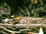 River Canyon - Laura - Pushing Logs