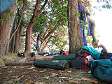 Camping - Blackberry Point - Valdes Island