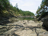 Wallace Island - Low Tide