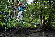 Rose Harbour - Rope Bridge