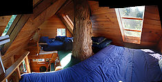 Cedar Creek Treehouse - Beds