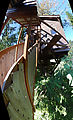 Cedar Creek Treehouse - Stairs