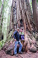Redwood National Park - Stout Grove - Geoff - Lyra