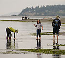 Beach - Tideflats - Hansville - Laura - Morgan - Mark