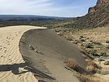 Frenchman Coulee - Sand Dunes (Photo by Laura)