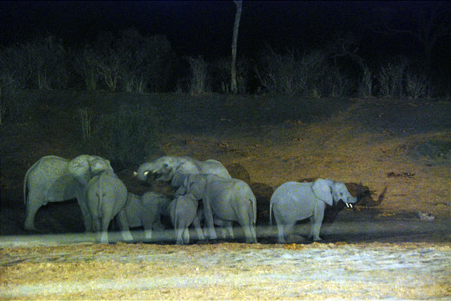Southern Africa, 2007