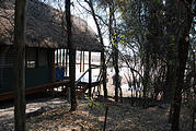 Botswana - Savute Safari Lodge - Elephant