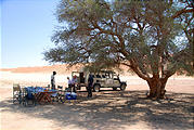 Namibia - Desert - Picnic Lunch - One of the few trees around