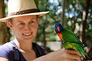 Townsville - Billabong Sanctuary - Bird - Rainbow Lorikeet - Liz