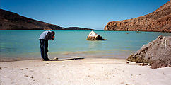 1st Beach: Laura Photographing Dead Pufferfish (Isla La Partida)