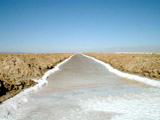 Driving North from San Felipe: Detour to see Salt Flats - Water at Salt Farm