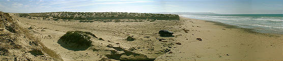 Malarrimo Beach (panorama) (1/2/2002 2:53 PM)