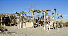 Malarrimo Beach - Driftwood Structures (01/02/2002)