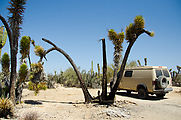 Mesa el Carmen - Parking - Joshua Tree - Sportsmobile