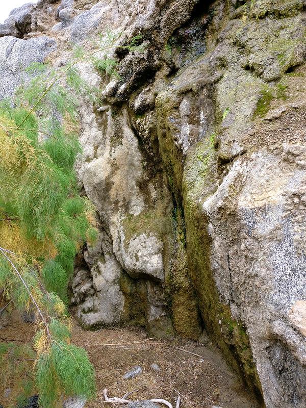 vibora canyon baja california mexico 2018