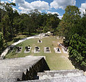 Tikal - Pyramid Ruin - Complex Q - View from the Top