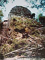 Tikal - Pyramid Ruin - Temple V - Old Restoration Photo - Trees Removed