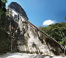 Tikal - Pyramid Ruin - Temple V - 100-ft. Wooden Access Ladder