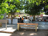 San Ignacio - Main Square - Voting