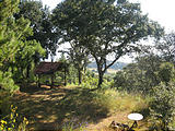Rancho Madroño - View (photo by Geoff)
