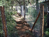 Rancho Madroño - New Dog Fence Pen (photo by Lars)