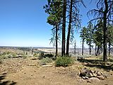 Deschutes National Forest - Oregon - View Campsite