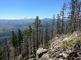 Deschutes National Forest - Oregon - Green Ridge - Mount Jefferson - View