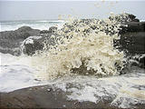 Yachats Sea Foam (October 18, 2004 2:24 PM)