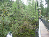Drift Creek Falls Suspension Bridge (October 20, 2004 3:04 PM)