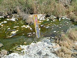 Warning sign at Trego Hot Springs source (7/12 4:19 PM)