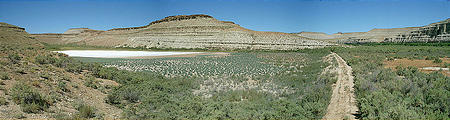 Nutters Hole: a small salt flat in the Green River valley (7/18 9:31 AM)