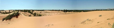Coral Pink Sand Dunes (7/29 3:14 PM)