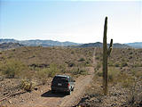 Swansea Ghost Town - Heading Southeast From Swansea - Jeep Cactus - Road