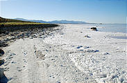 Utah - Salt and Foam near Spiral Jetty