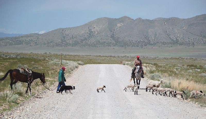 Pony Express Trail Utah Road Trip 2011